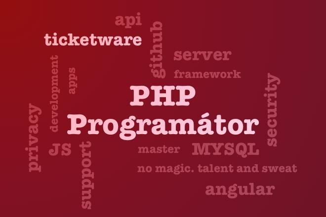 ilustr-programator